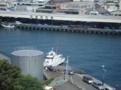 びゅうおから沼津港を望む