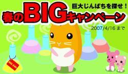 春のBigキャンペーン