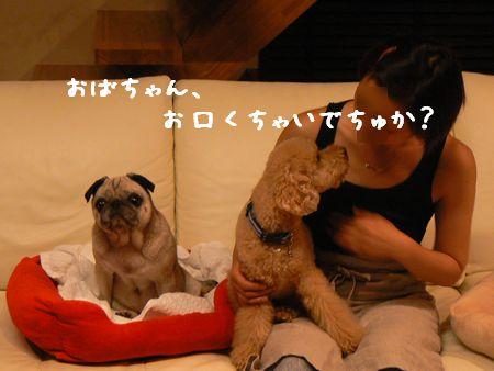 5_20090720155904.jpg