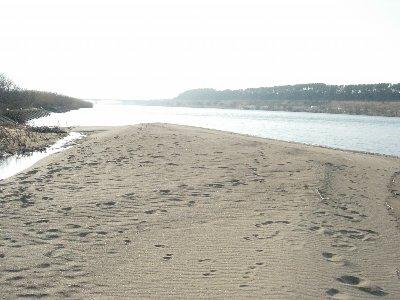 DSCN0532砂地