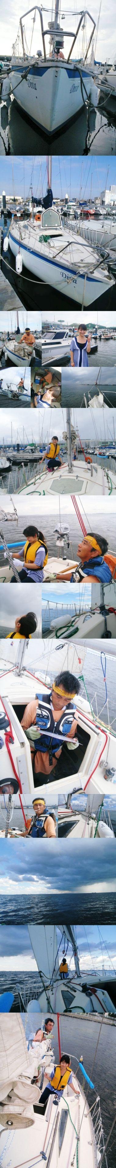 Diva ヨット 東京湾