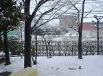 自宅のベランダから撮影した雪景色