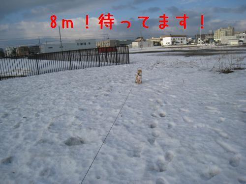 IMG_1519_convert_20090320203752.jpg