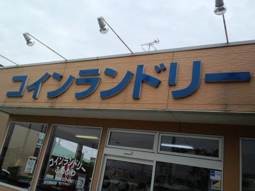 PAP_0101.jpg