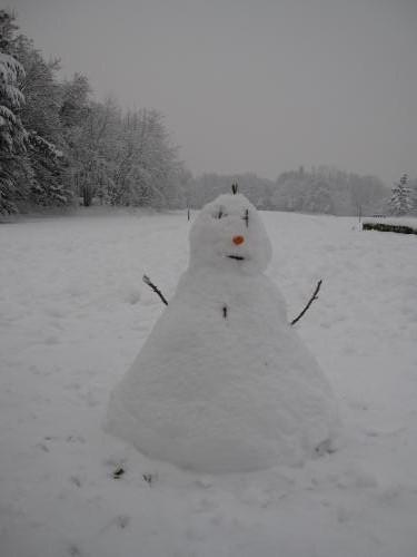 IMG 0319 convert 20090107002138 - 雪と、記憶と、雪だるま
