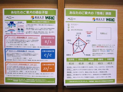 IMG_6482 (2)