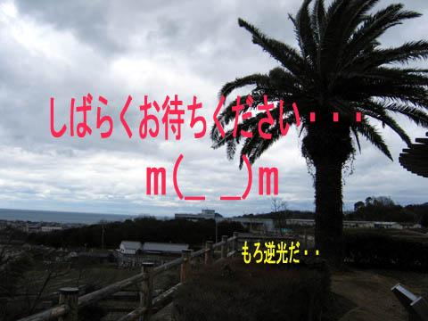 IMG_8093.jpg
