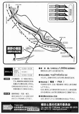 棚田ウォーク2