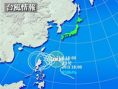 typha_20091020195310.jpg