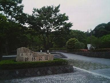 SA310038.jpg