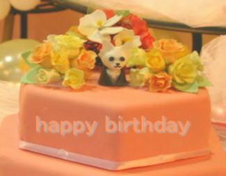 誕生日ケーキをどうぞ!