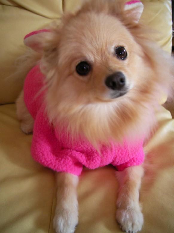 LOVEの寒い日の上着