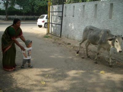 インドの家 近所の路上