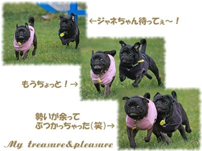 20081116_10.jpg