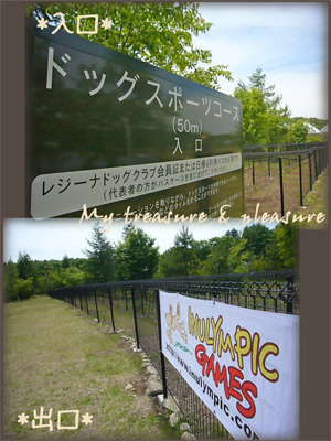 20090617_7.jpg