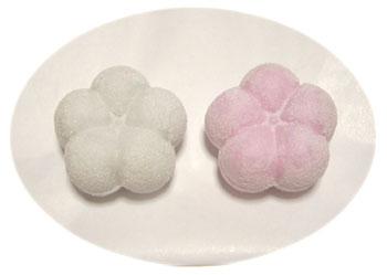金沢のお菓子:福梅