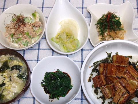 20081017パパさん夕ご飯