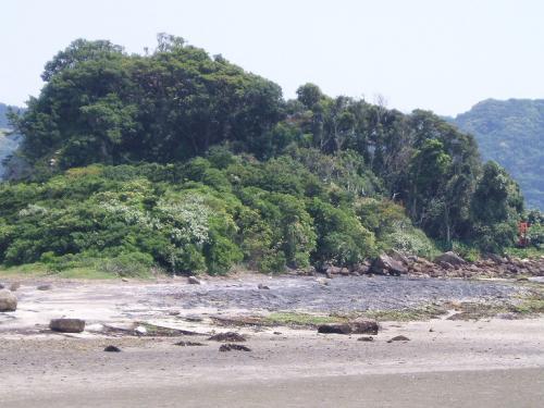 20090429景色1