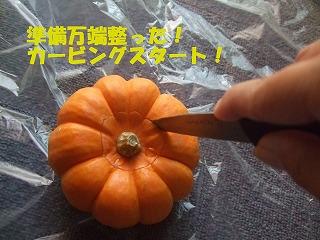 2008_1021carv0001.jpg