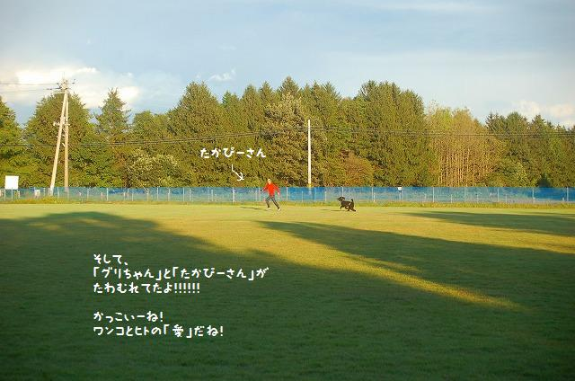 20111005-8.jpg