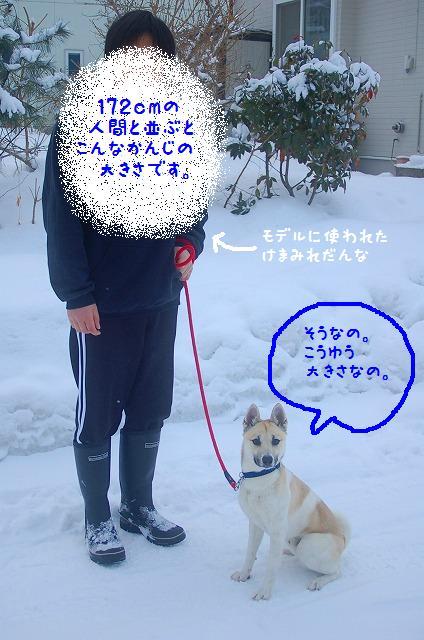 20120209-2_20120209133052.jpg