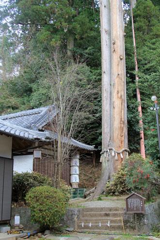 mikumari12245.jpg