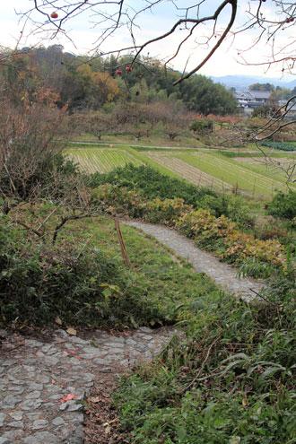 yamanobe12131.jpg