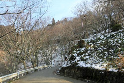 yosinomikumari002.jpg