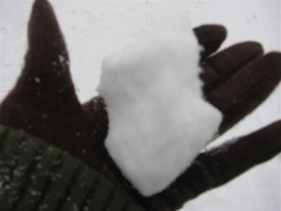 1月10日雪玉