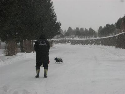 1月13日パパさんと散歩