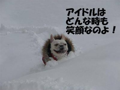 1月22日笑顔の姫ちゃん