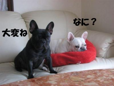 1月24日乙女&小梅