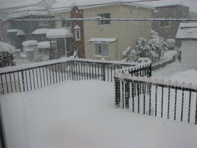 1月24日大雪