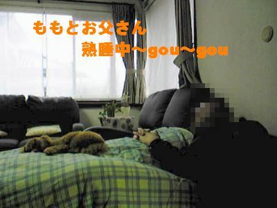 SBSH0103+縺ョ陬懈ュ」_convert_20090309224648