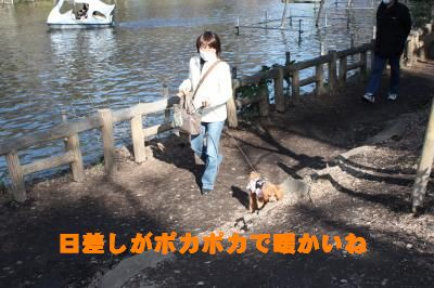 IMG_0207_convert_20090318204002.jpg