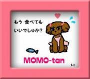 momochan_20090802193830_convert_20090813171801_convert_20090817163310.jpg