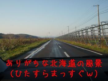 081101-01.jpg