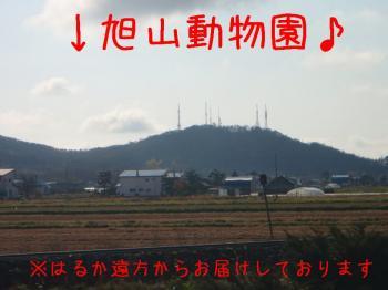 081101-12.jpg
