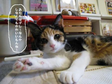 縺薙>縺。繧・s蜷ヲ螳喟convert_20090315094631[1]
