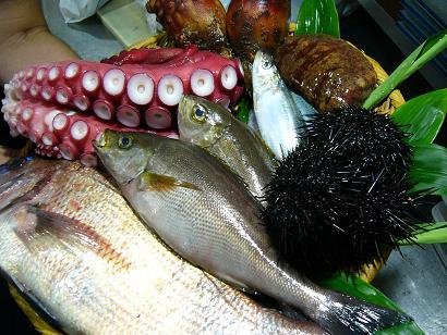 鯛・蛸・イサキ・ウニ・ホヤ1 (2)