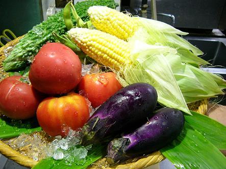 夏野菜セット1 (3)