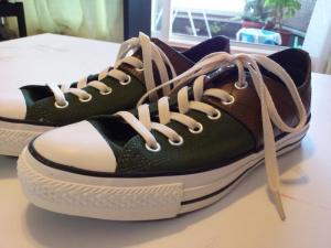 かんぶつ靴