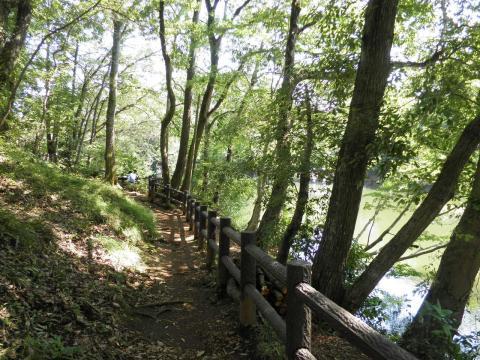 湖畔の遊歩道129
