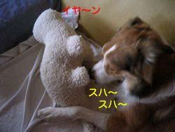 2008011907.jpg