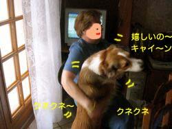 2008012003.jpg
