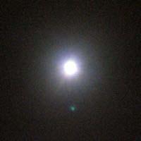 2008012315.jpg