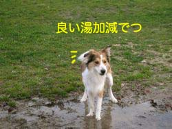 2008012412.jpg