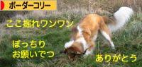 2008012800.jpg