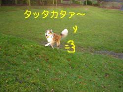 2008020105.jpg