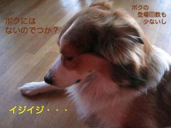 2008021408.jpg